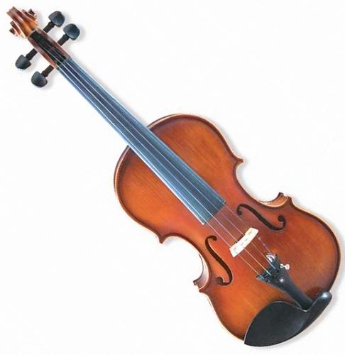 金音小提琴E800
