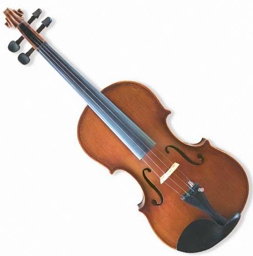 金音小提琴E9A0