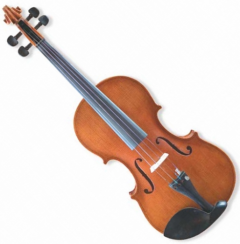 金音小提琴E900